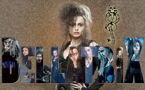Bellatrix Lestrange wallpaper probably with a sign titled HBC rules:)