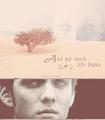 Jake Abel as Ian in THE HOST )fan made)