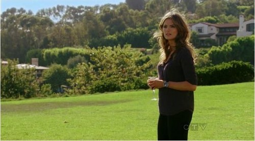 Kate Beckett karatasi la kupamba ukuta probably containing a well dressed person titled Katherine Beckett 5x04