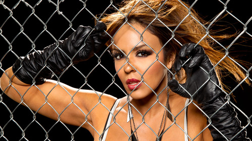 wwe - Layla hình nền containing a chainlink fence titled Layla