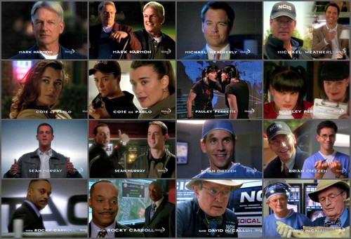 Tiva achtergrond probably with a hekje, wicket called NCIS Season 10 Cast Opening Credits