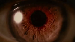 New Breaking Dawn Part 2 Screencaps