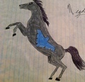 Nightwing Stallion - young-justice-ocs fan art