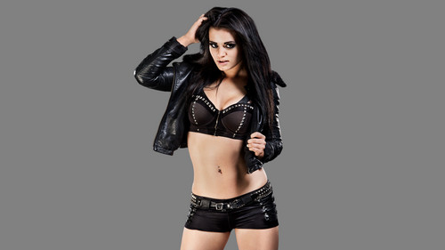 WWE Divas achtergrond possibly with attractiveness, a lingerie, and a brassiere called Paige