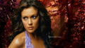 Phoebe Wallpaper Autumn Special - phoebe-halliwell wallpaper