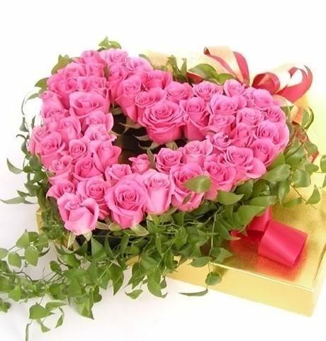 Pink Roses for Princess