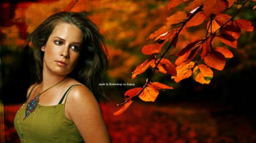 Piper fond d'écran - Autumn Special