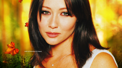 Prue Halliwell wallpaper containing a portrait titled Prue Halliwell Wallpaper - Autumn Special
