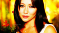 Prue Halliwell wallpaper - Autumn Special