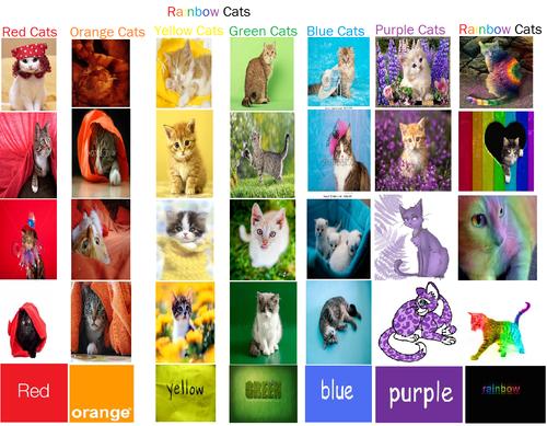 इंद्रधनुष बिल्ली