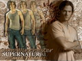 Sam Winchester - supernatural wallpaper