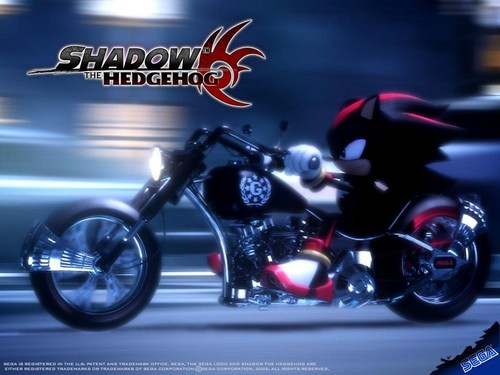 Shadow the hedgehog...i love it