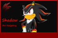 Shadow the hedgehog...i love it - shadow-the-hedgehog photo