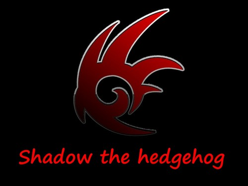 Shadow the hedgehog...i amor it