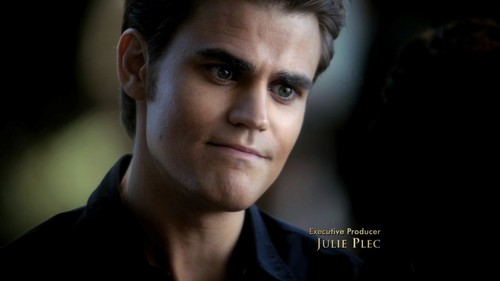 Stefan Salvatore wallpaper containing a portrait called Stefan