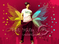 Tae Yang wallpaper - danielle-and-oracle wallpaper