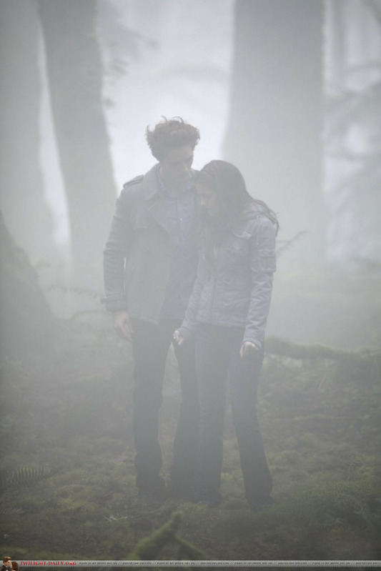 Twilight flashback-Countdown to Forever-27 days til BD part 2