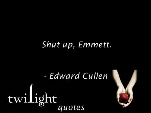 Twilight 语录 541-560