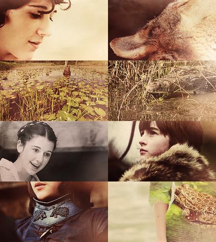 Meera Reed & Bran Stark