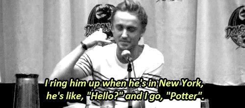 gotta Liebe tom
