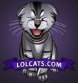 lolats - lol-cats photo