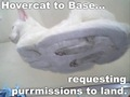 lolcats - lol-cats photo