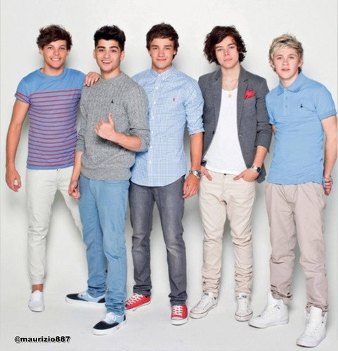 one direction, the official annual - 2012