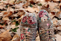 shoes  - autumn photo