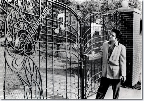 Ingrid's Graceland 壁纸 possibly with a palisade, a chainlink fence, and a holding cell titled ♥ Elvis in Graceland ♥