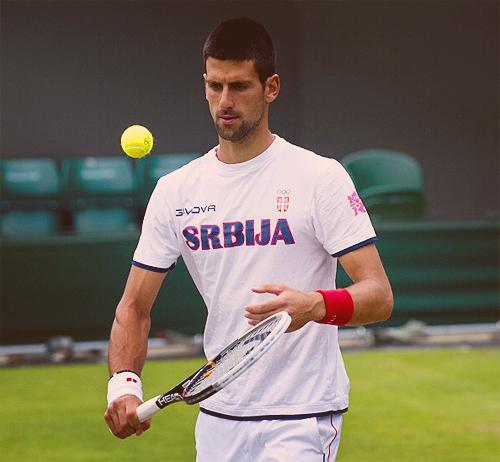 ~Novak~