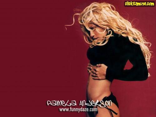 Pamela Anderson wallpaper containing a portrait called  Pamela Anderson