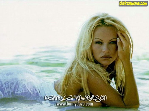 Pamela Anderson wallpaper possibly with a water, a portrait, and skin called  Pamela Anderson