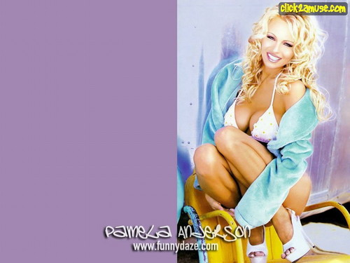 Pamela Anderson wallpaper possibly with a portrait and skin called  Pamela Anderson