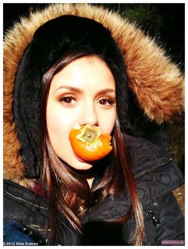 """Persimmon is my 가장 좋아하는 fruit. #fridayfact"""