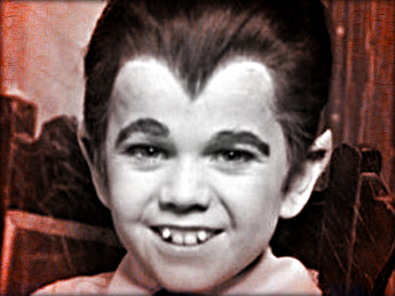 The Munsters ☆ The Munsters Wallpaper 32612932 Fanpop