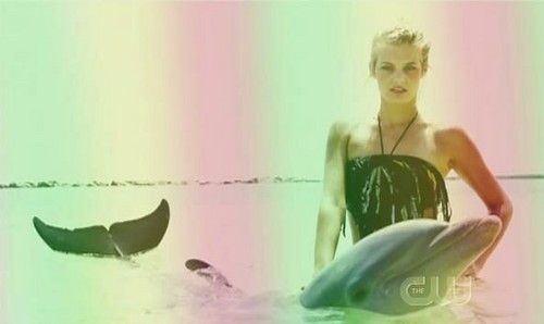 ANTM college edition_episode 10_challenge: posing with dolphins