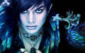 AdamLambert - adam-lambert wallpaper