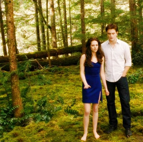 বেলা সোয়ান দেওয়ালপত্র containing a beech, a sitka spruce, and a mahogany entitled Bella and Edward Cullen