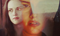 Bella Swan Cullen - bella-swan photo