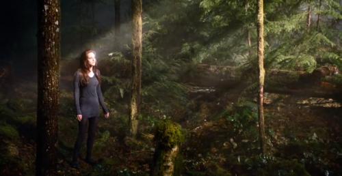 Bella angsa, swan Cullen