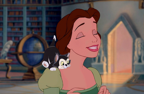 Belle's New Pet