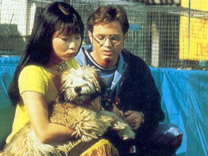 The Power Rangers wallpaper possibly containing a soft coated wheaten terrier called Billy and Trini