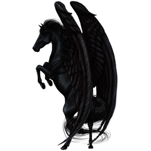 Black-Pegasus-Coats-the-new-howrse-32623075-300-300.png