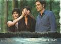 Breaking Dawn 2 - twilight-series photo