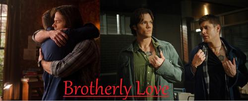 Brotherly प्यार