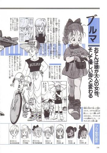 Bulma's File (Page1)