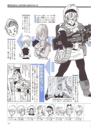 Bulma's File (Page2)