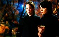 Charmed Wallpaper Halloween Special - charmed wallpaper