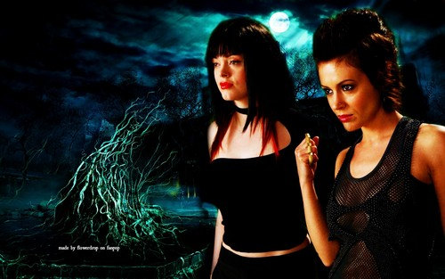 Charmed wallpaper with a portrait called Charmed Wallpaperღ Halloween Special