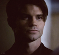 Daniel Fan Art - daniel-gillies fan art